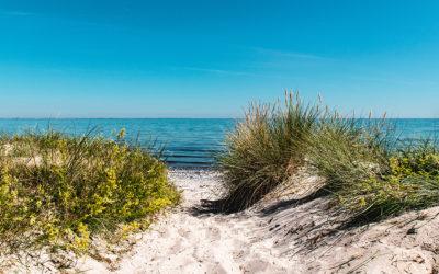 Møn Strandcamping – Ulvshale